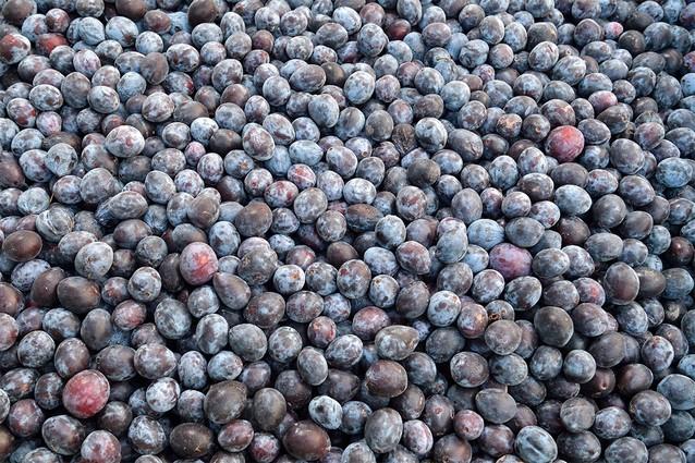 Do výroby se dostává pouze zralé a čisté ovoce