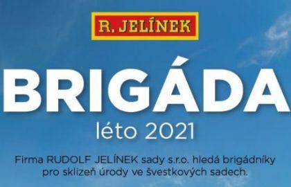 Brigada_svestky_leto_2021